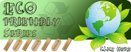 Eco Promotional Friendly USB